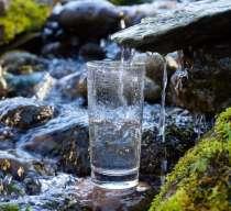 Можно ли пить воду из природных родников в Севастополе?