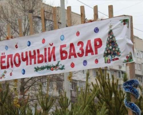 Ёлочные базары Севастополя открываются уже сегодня